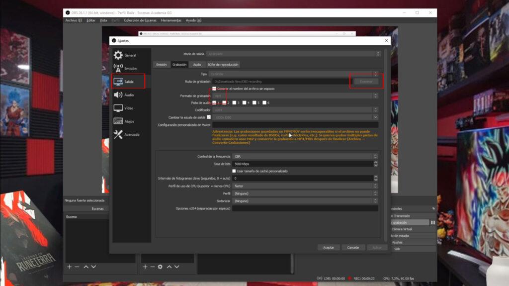 Configuracion ajustes de salida OBS Studio
